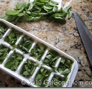 How to freeze garden fresh basil
