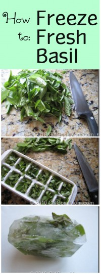 How to freeze garden fresh basil | GirlGoneMom.com
