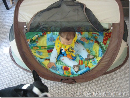 Kidco Peapod Plus Kids Travel Bed Review Giveaway Girl Gone Mom