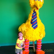 Girl's Day at Sesame Place and the Cupcake Happy Hour #spbloggerplaydate