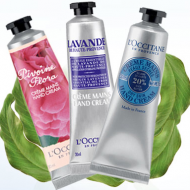 Like L'Occitane on Facebook and get a Free Hand Cream Sample