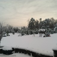 Wordless Wednesday – Snow Beautiful