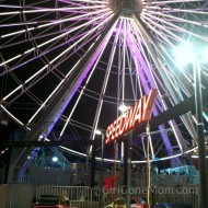 Wordless Wednesday: The Ferris Wheel at Night