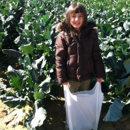 Wordless Wednesday: Fall at the Farm