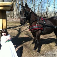 Winter Wedding at Allaire