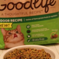 Good Cat Food: How We Love Our Kitties