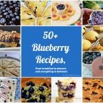 50+ Blueberry Recipes | GirlGoneMom.com