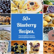 50+ Blueberry Recipes