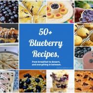 50+ Blueberry Recipes