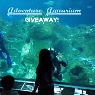Adventure Aquarium Giveaway