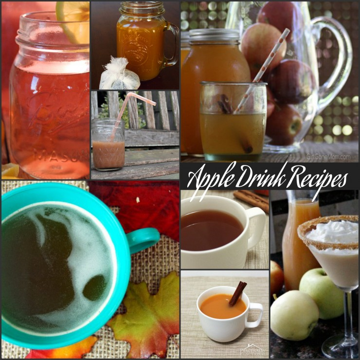 Homemade apple drink recipes PLUS 150 apple recipes in every meal category