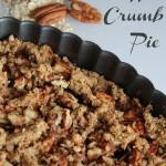 Oatmeal Cookie Crusted Apple Crumb Pie – OATrageous Oatmeals
