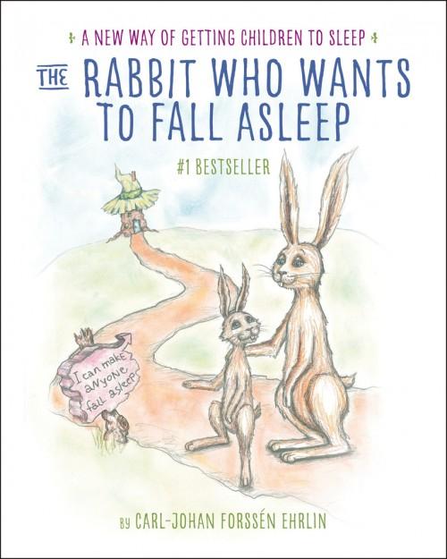 RabbitWhoWantsToFallAsleepCOVER