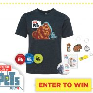 Giveaway: The Secret Life of Pets in Theaters July 8th #TheSecretLifeofPets