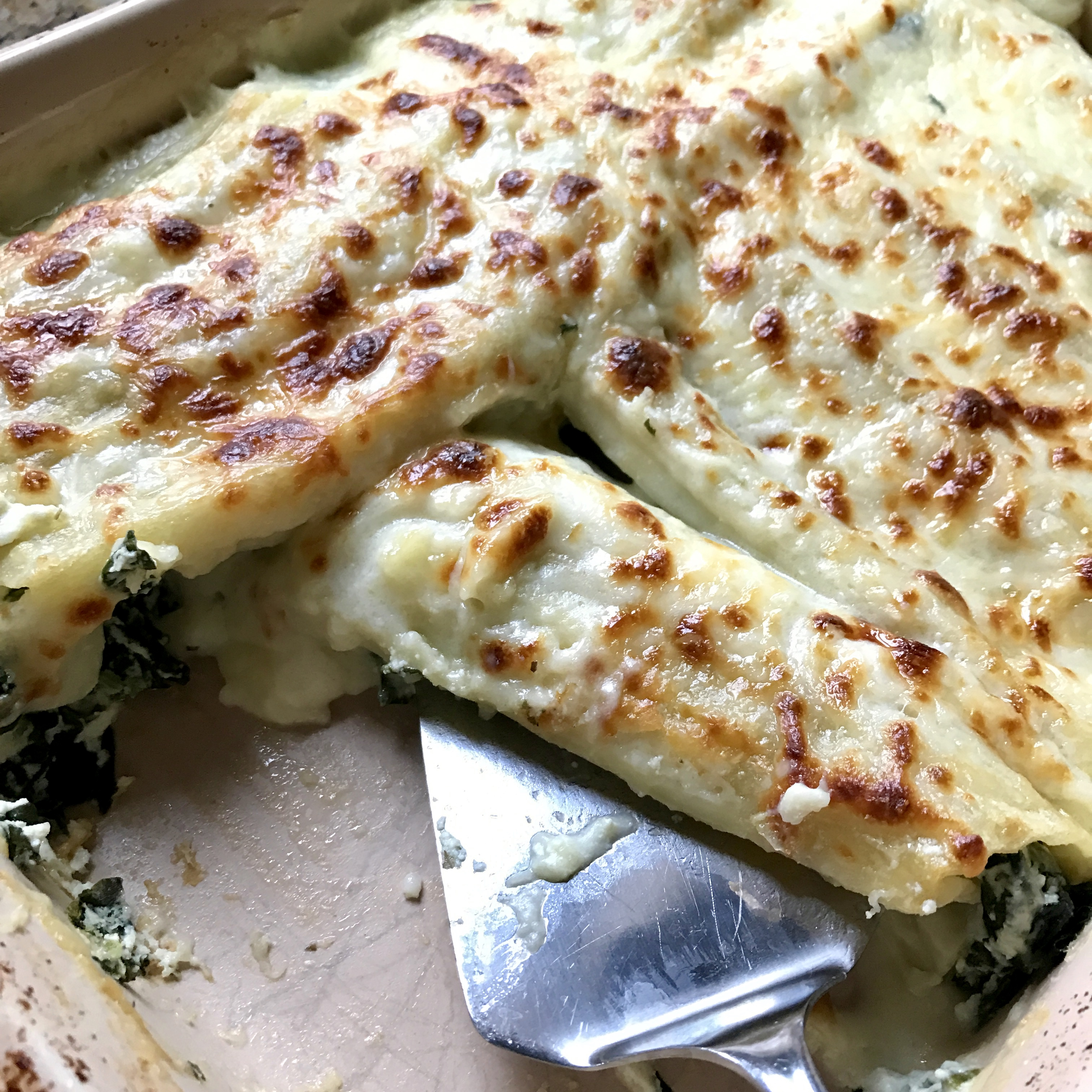 spinach manicotti with bechamel sauce girl gone mom