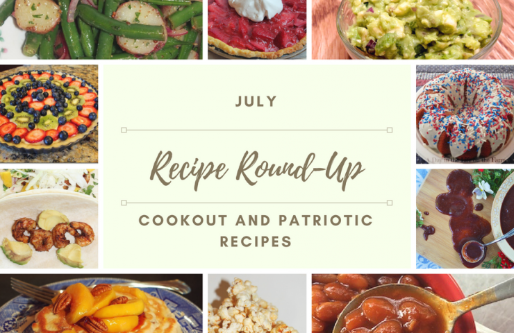 July Recipe Round-up + Food Dehydrator Machine Giveaway!