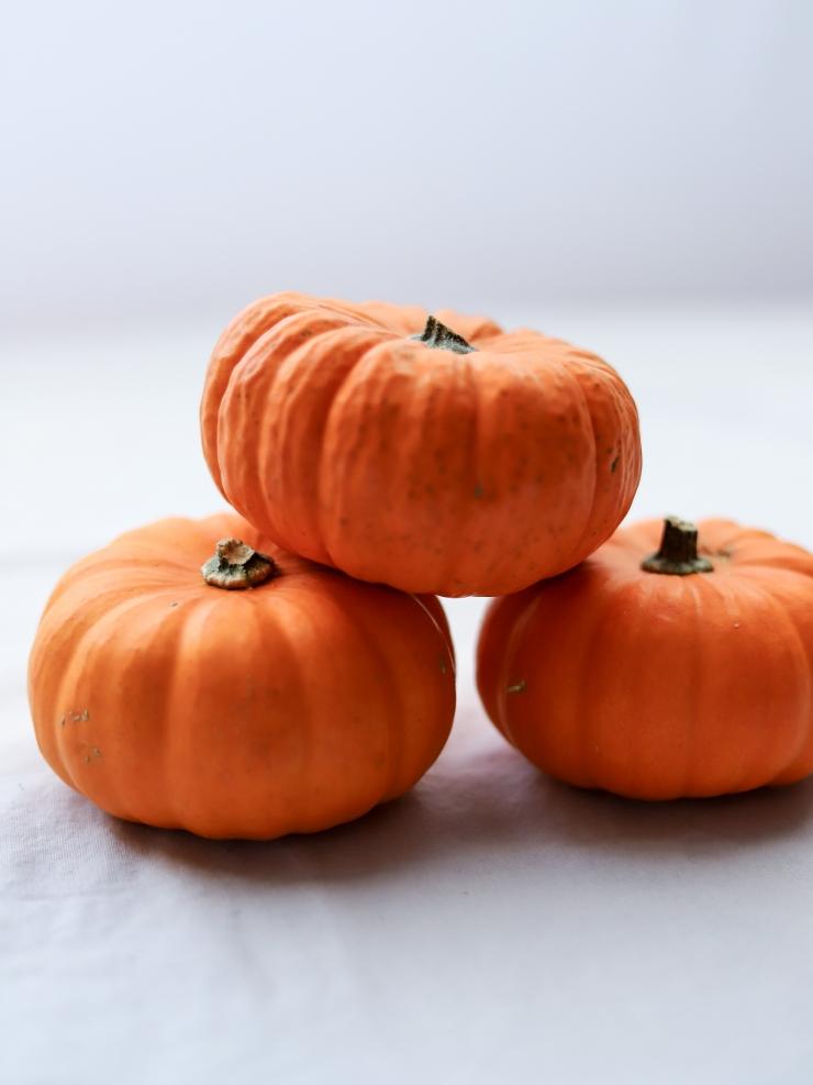 Pumpkin Spice Roundup